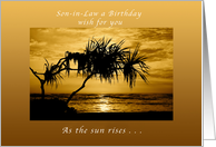 Son-in-Law Birthday Wish , As The Sun Rises, Palm Tree, Happy Birthday card