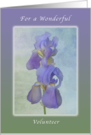 A Birthday Wish for a Wonderful Volunteer, Purple Irises card