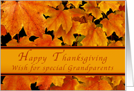 Happy Thanksgiving for Special Grandparents, Autumn Maple leaves card