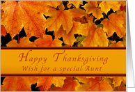 Happy Thanksgiving for Special Aunt, Autumn Maple leaves card