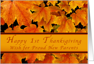 Happy 1st Thanksgiving Proud new Parents, Autumn Maple leaves card