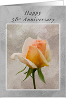 Happy 38th Anniversary, Fresh Rose on a Textured Background card