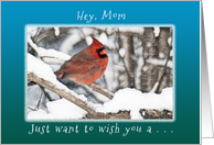 Hey, Mom / Mother, Wish you Merry Christmas & New Year card