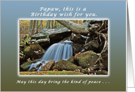 A Birthday Wish for Papaw, Fresh Peaceful Mountain Stream card