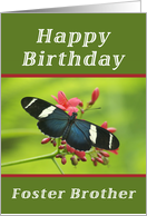 Happy Birthday Foster Brother, Butterfly card