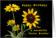 Happy Birthday Foster Brother, Rudbeckia flowers card