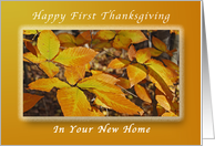 Happy First Thanksgiving in Your New Home, Autumn Beech Leaves card