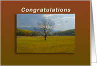 Congratulations Award and Recognition Tree standing alone card
