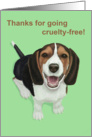 Thanks for Going Cruelty-Free--Smiling Beagle Card