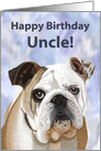 Happy Birthday Uncle!--English Bulldog card