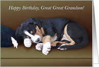 Naughty Puppy Sleeping--Birthday for Great Great Grandson card