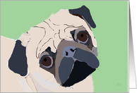 Sad Pug - I'm Sorry, I was being pugnacious card