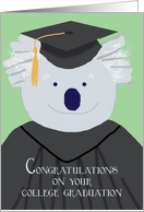 College Graduation Congratulations, Koala Bear Humor card