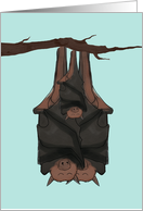 New Baby Congratulations, Bats Hanging on Branch Together card