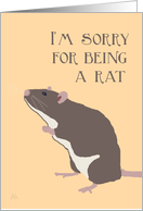 I'm Sorry For Being a Rat card