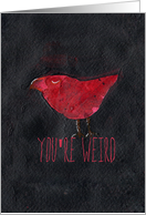 You're Weird, I like you. Red Bird Friendship card