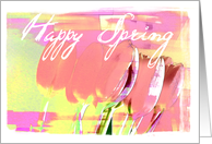 Spring Tulips Blank Card
