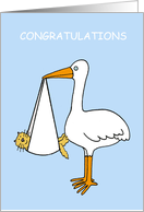 Congratulations New Pet Kitten or Cat Fur Baby Cartoon Stork Humor card