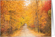 Autumn Leaves Tree Lined Road Blank Any Occasion card