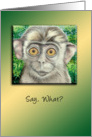 Monkey Says, What? All Occasion Blank Note Card