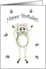 Happy Birthday Let's Paint the Town Excited Mouse Card