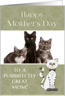 From Cat on Mother's Day custom photo card