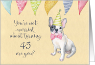 Happy 45th Birthday Worried Bulldog Party Hat and Banners card