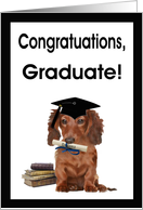Congratulations Graduate Card - Dog, Diploma & Books card