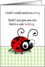 Cute ladybug instead of a hug - Thinking of you across the miles card