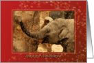 Little Elephant Stars Shower - Happy Holidays Red card