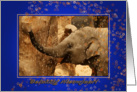 Little Elephant Stars Shower - Gelukkig Nieuwjaar Happy New Year card