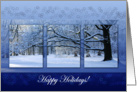 Reaching Far Winter Tree - Happy Holidays Christmas New Year card