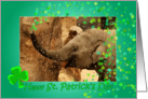 Little Elephant shamrock shower - Saint Patrick's Day card