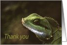 Little Green Spiny Lizzard Close-up Thank You Green Natural blank card