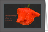 Poppy raindrops red grey - in remembrance of Son Birthday card