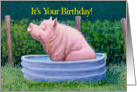 Pig in Water Enjoying His Birthday! card
