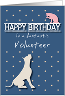 Fantastic Volunteer Birthday Golden Star Cat and Dog card