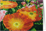 All Occasion Blank Note Card - Red Orange Poppies card