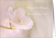 Floral Blessings on Your Wedding card