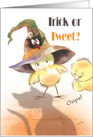 Halloween, Trick or Tweet - Oops, Bird in Witches Hat faces Cat card