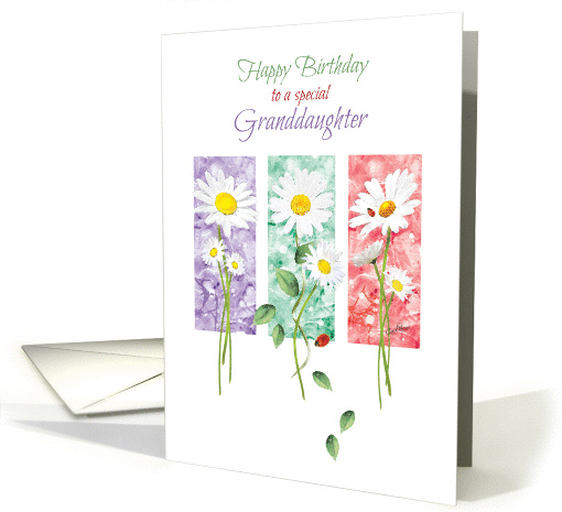 Birthday, Granddaughter, - 3 Long Stem Daisies on Color Panels card