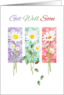 Get Well Soon - 3 Long Stem Daisies on Color Panels card