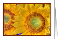 Yellow Sunflowers Bright and Cheerful ReligiousThank you card