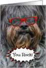 Congratulaions -- Sheepdog in Red Sunglasses card