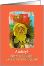 Happy Birthday-Audrey-Customizable-Coloured-Coral-Yellow Crocus-Photo card