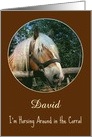 Happy Birthday-David-Customizable-Horse-Corral-Browns-Pun-Photo card