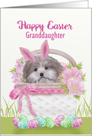 Happy Easter Granddaughter with Pup in Basket Gingham Bow, Flowers card