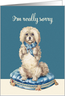 I'm really sorry, Vintage Dog on Blue Tufted Cushion card