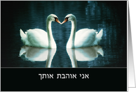 Love & Romance Cards In Hebrew from Greeting Card Universe