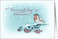 Peace and Joy to a special Veterinarian, Robin, Painting card